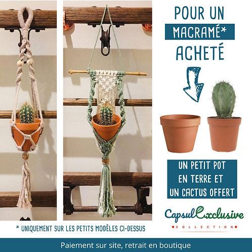 MACRAME SUSPENSION ADELAIDE Pot 7cm - MINI Cactus et pot OFFERT