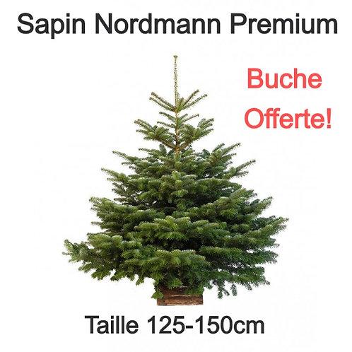 Sapin de Noël Naturel - Variété Nordmann - BUCHE OFFERTE - 125-150cm