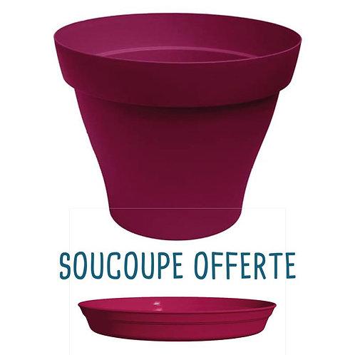 Pot Plastique Griotte - Soucoupe OFFERTE