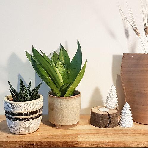 Cache pot Céramique - Graphique Ethnique ou petit pieds diamètre 9cm