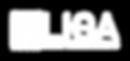 i9 Liga de Empreendendorismo - Logotipo_