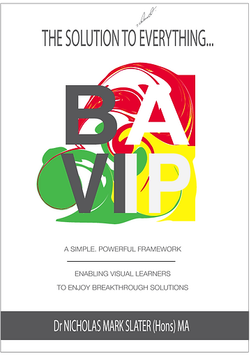 BAVIP-bookcover_new.png
