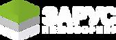 Зарус_логотип!_2.png