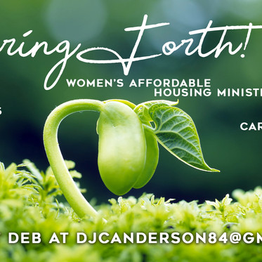 Spring Forth! - Women's Affordable Housing Ministry