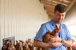 Poultry Care Team