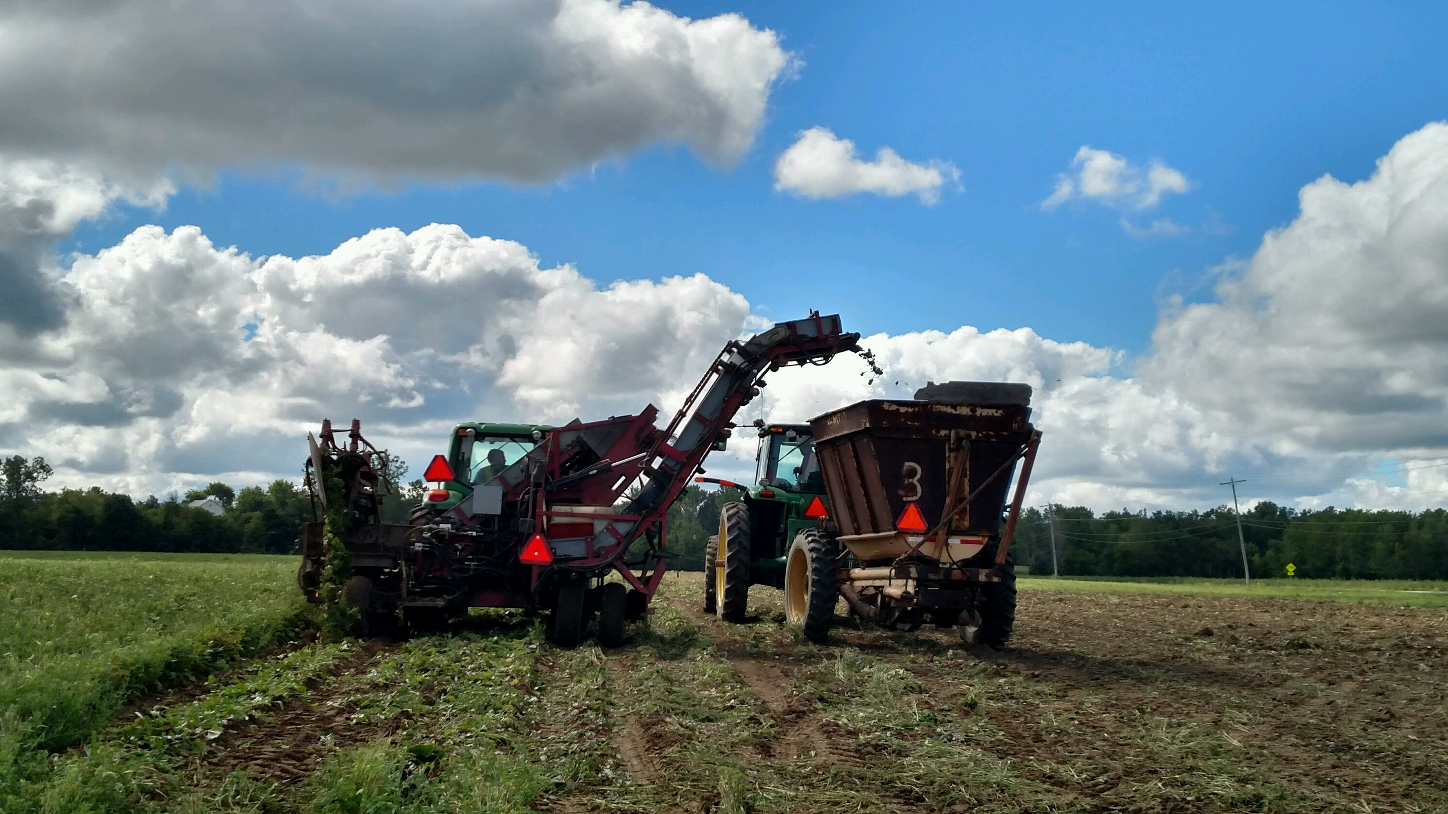 Crops & Field Team