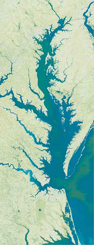 Chesapeake Bay satellite art map