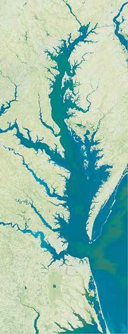 Chesapeake Bay satellite art map