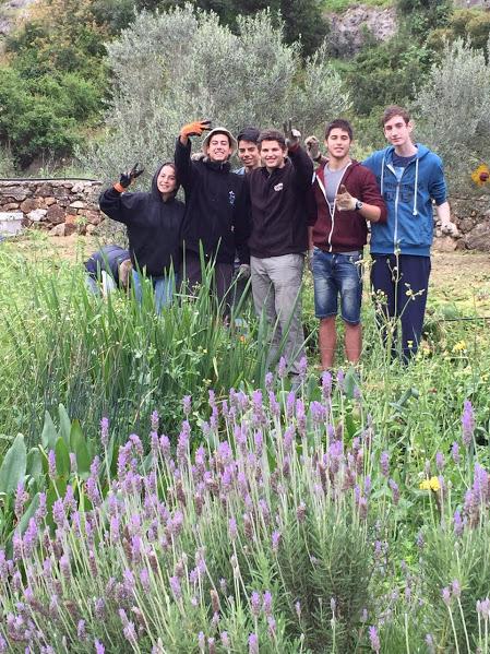 התנדבות נוער בבוסתן