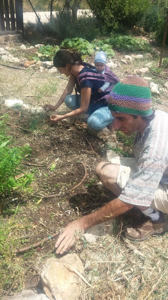עובדים בגן ירק עם תינוק