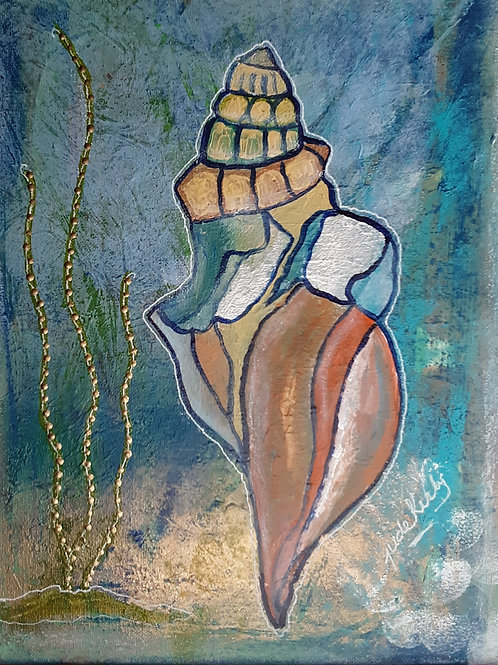 Shell Dancer
