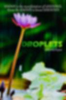 Droplets book, spiritual wisdom, awakening