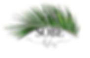 clearlogo-02.png