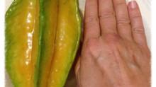 Magical Starfruit