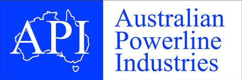 API Logo 1.JPG