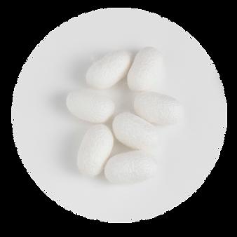 ECOMACO エコマコ シルク グリーン原料