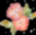 ECOMACO エコマコ 美人スカーフ