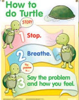 the turtle.jpg