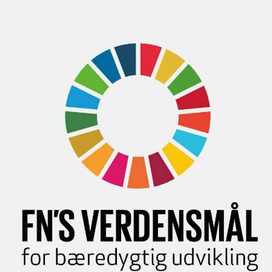 Workshop om FN's Verdensmål i samarbejde med Dansk Industri