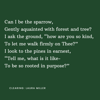 Can_I_be_the_sparrow,_Gently_aquainted_w