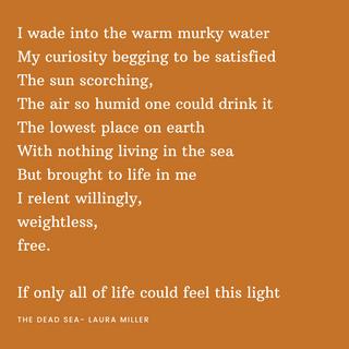 I wade into the warm murky waterMy curio