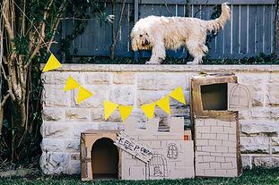 Outdoor fort (L).jpg