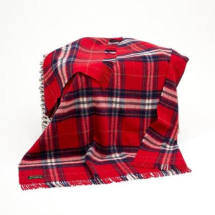 John Hanly Picnic Blanket Red Check