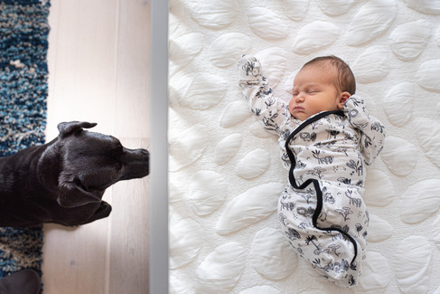Austin newborn photography