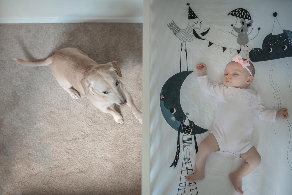 Newborn Lifestyle Austin Photographer