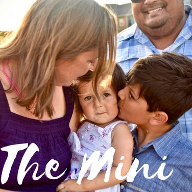 The Mini.png