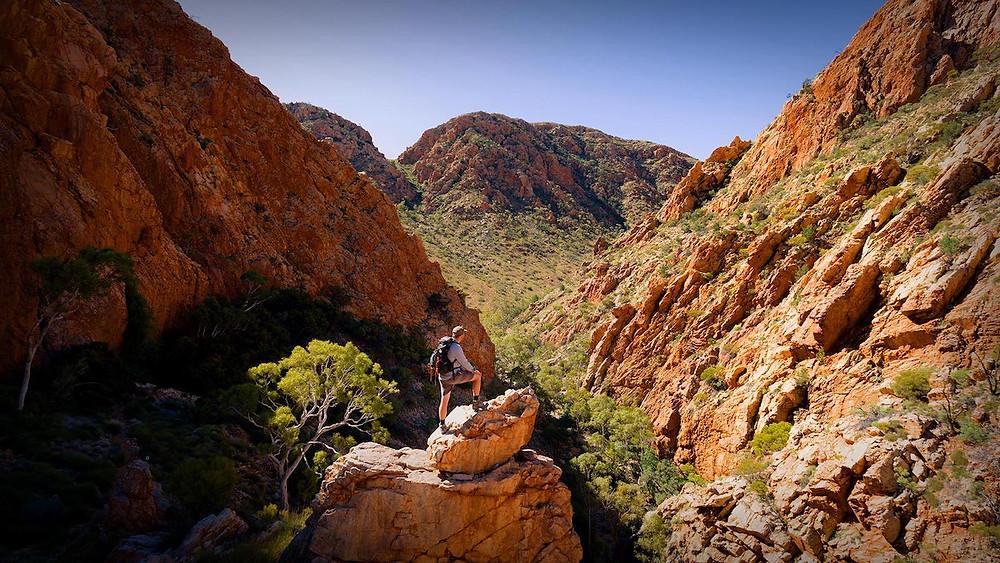Hiking the Larapinta trail in Australia