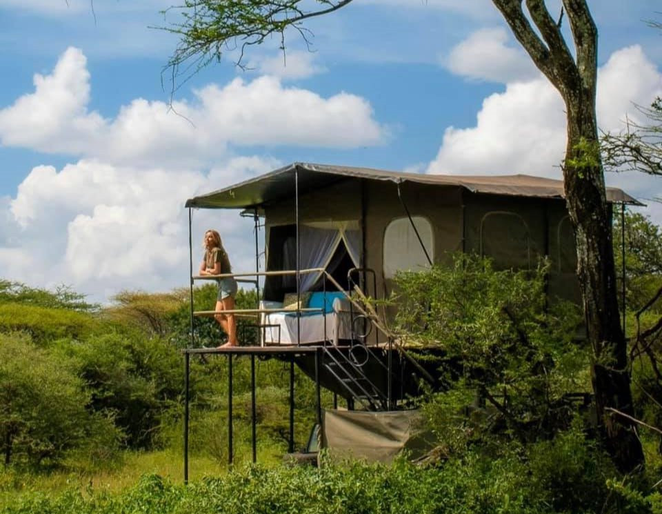 Tent With A View accommodation in the Serengeti