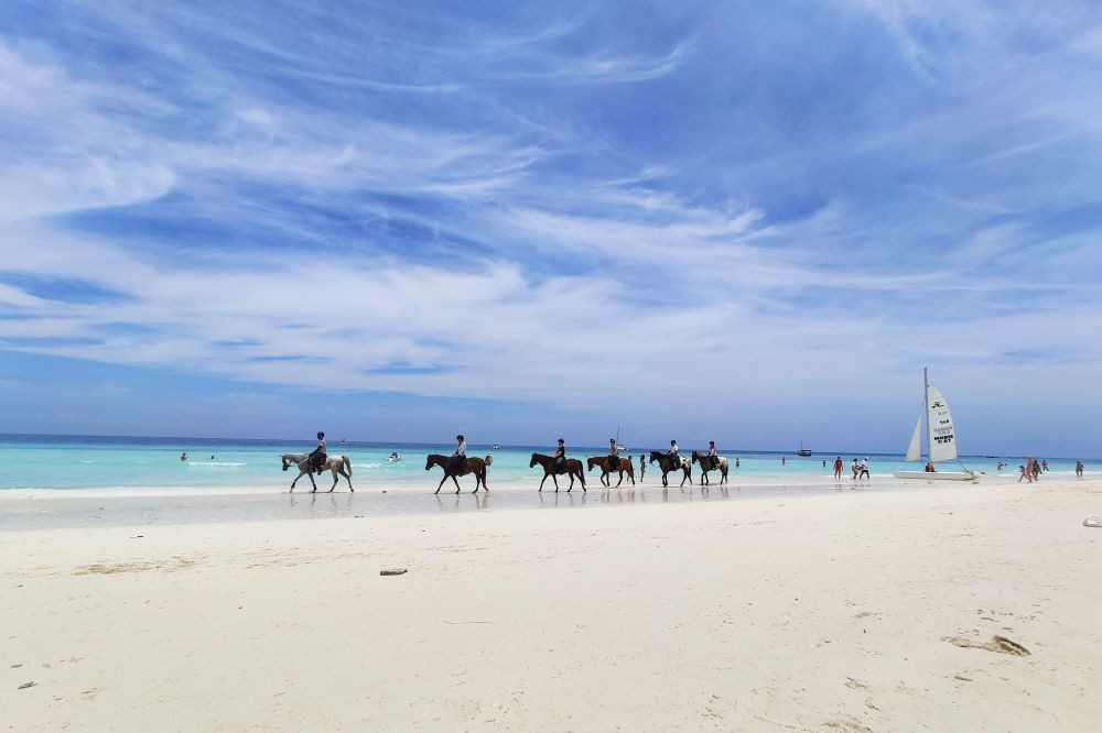 Horse riding on beach in Zanzibar