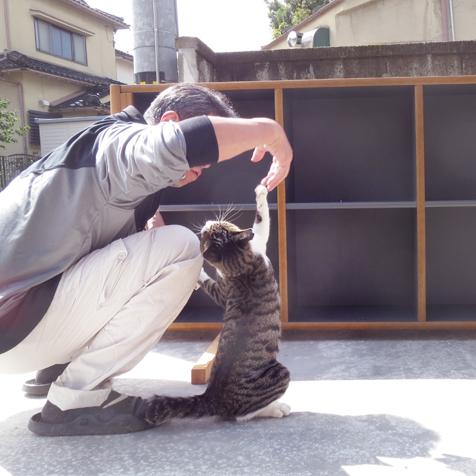 猫と戯れる旦那さん