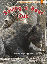 Saving a Bear Cub
