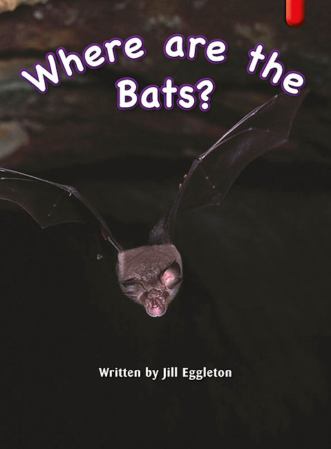 Where are the Bats?