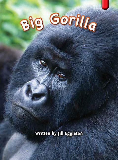 Big Gorilla