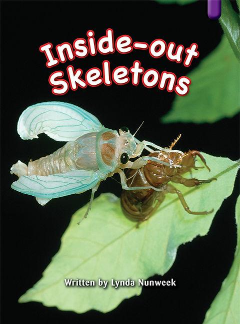 Inside-out Skeletons