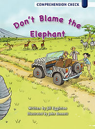 Don't Blame the Elephant