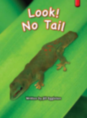 Look! No Tail