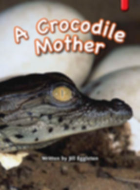 A Crocodile Mother