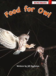 Food for Owl