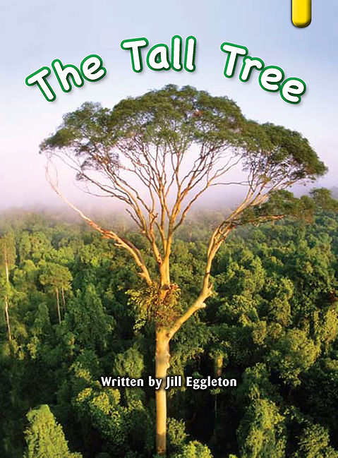 The Tall Tree