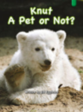 Knut — A Pet or Not?