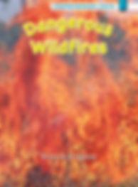 Dangerous Wildfires