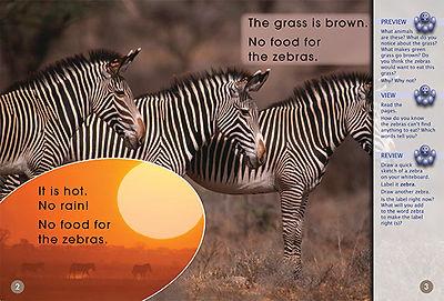 Food for Zebras