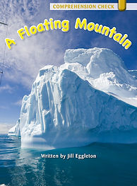 A Floating Mountain