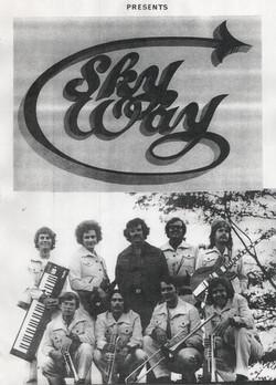 Skyway poster (1973)