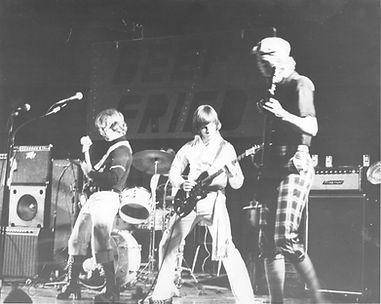 Deep Fried (1977) (Dave, left, guitar)