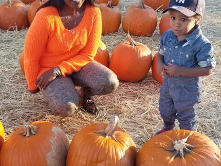 3 pumpkin patch you should visit in Ga 2020